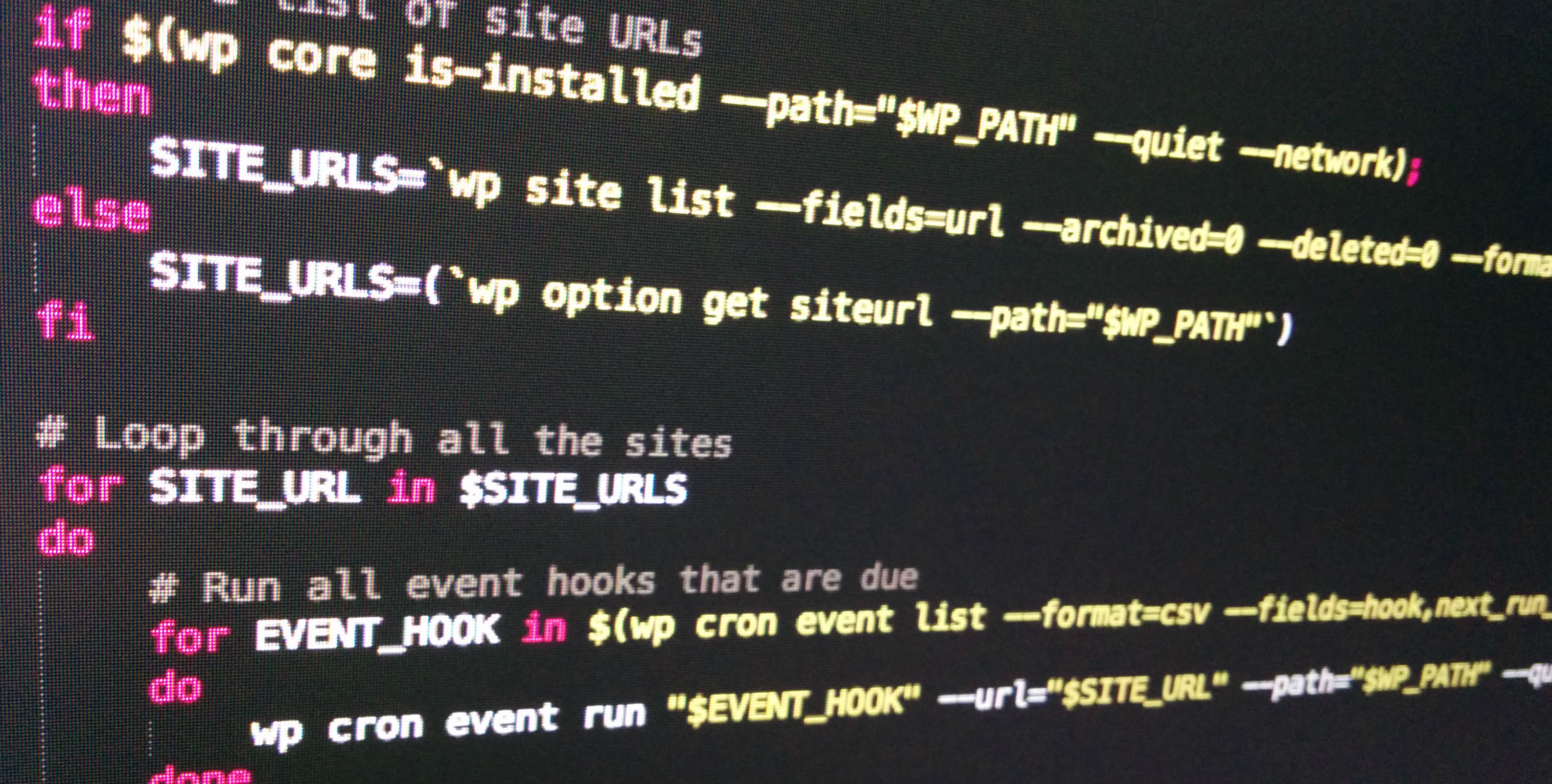 Run all due cron events for WordPress with WP-CLI